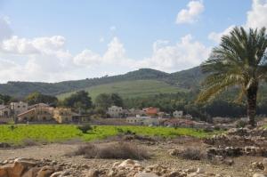 Megiddo (800x531)