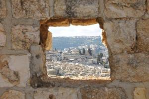Overlooking Jerusalem (2012)